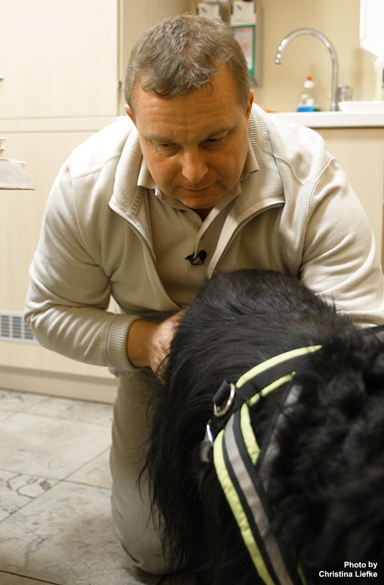 Rosin Tiergesundheit - Tierarztpraxis - Goldakupunktur